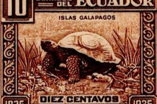 Ecuador 1936 feature image