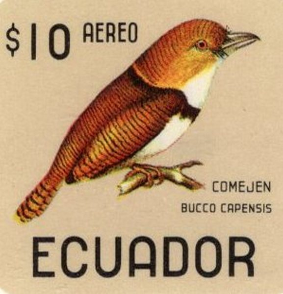 Ecuador 1966 feature image birds