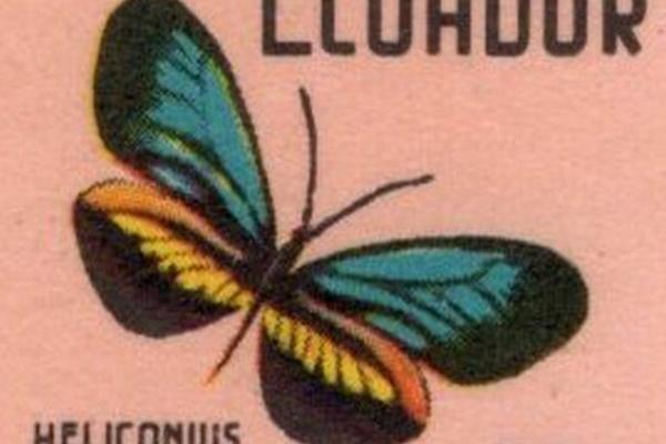 Ecuador 1970 feature image
