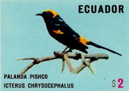 Ecuador 1973 feature image 2