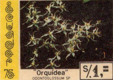 Ecuador 1975 feature image 3