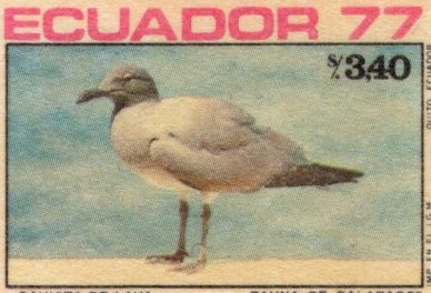 Ecuador 1977 feature image 2