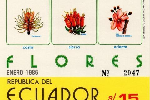 Ecuador 1986 feature image