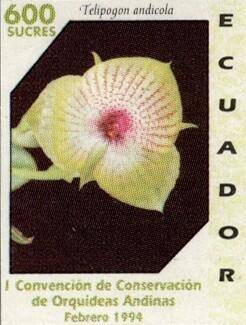 Ecuador 1994 feature image