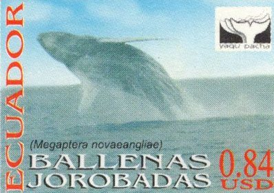 Ecuador 2000 feature image