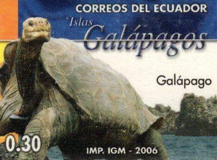 Ecuador 2006 feature image 2